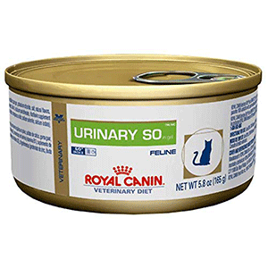 Royal Canin Best Cat Food for Urinary Problems